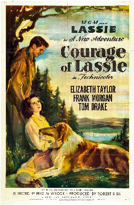 Courage of Lassie poster