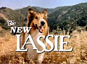 The New Lassie Episode Guide